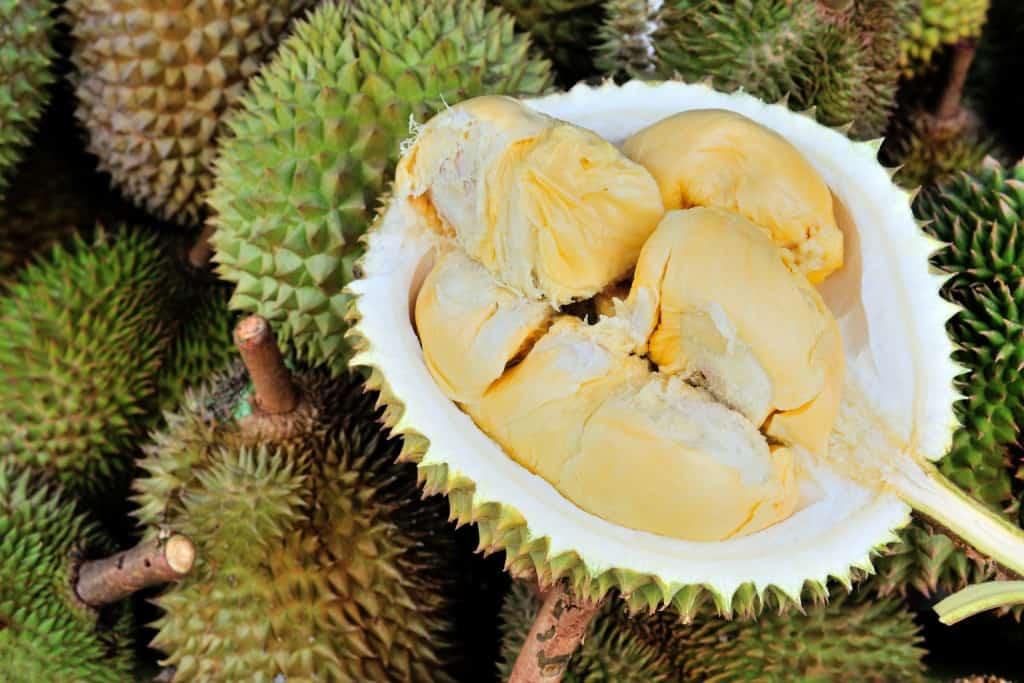 Durian Riau Sumatera